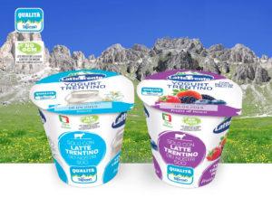 news-yogurt-min-1