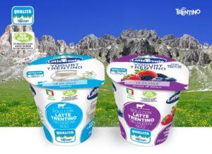 news-yogurt-