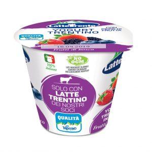 foto_yogurt-